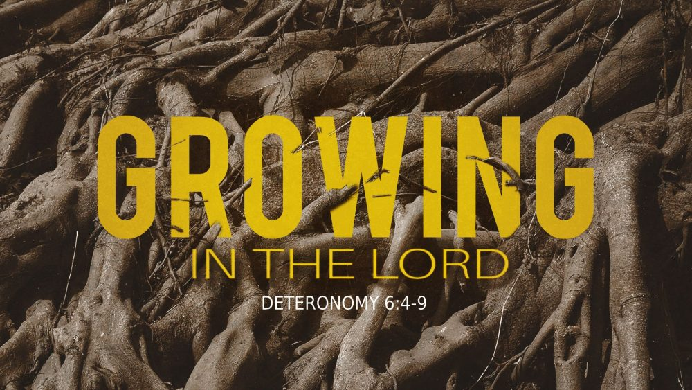 Growing in the Lord Image