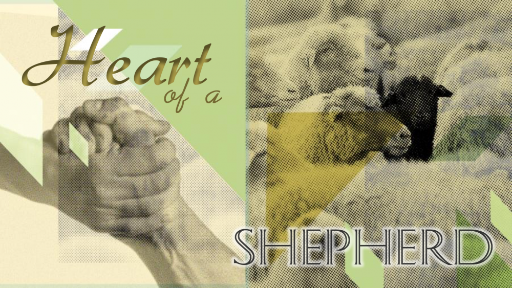 Heart of A Shepherd Image