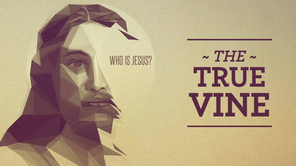 Who Is Jesus: The True Vine Image